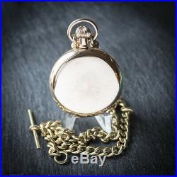Waltham 17 Jewel Gold Filled Full Hunter Pocket Watch + Chain + Case